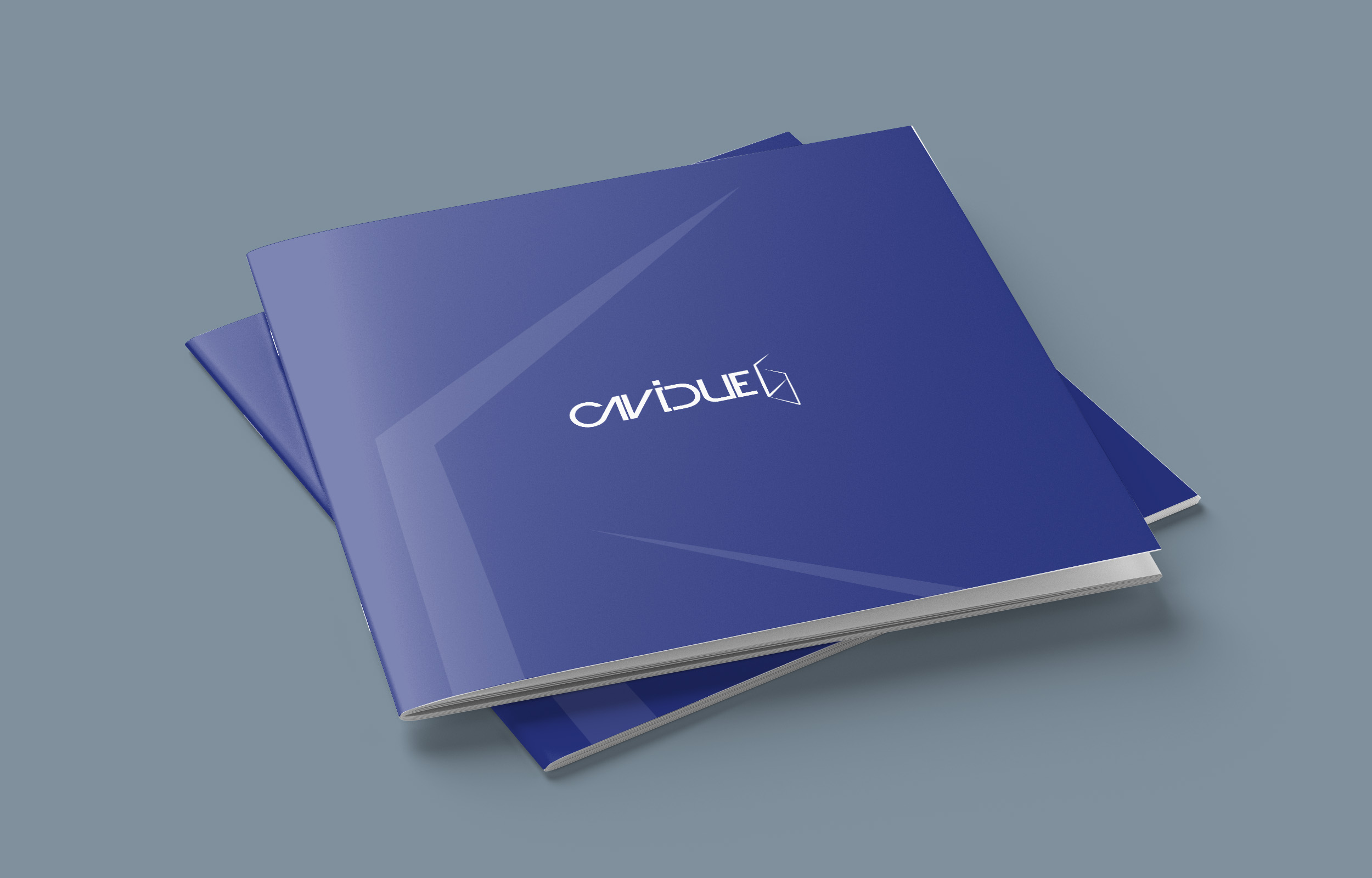 Cavidue brochure storia del marchio