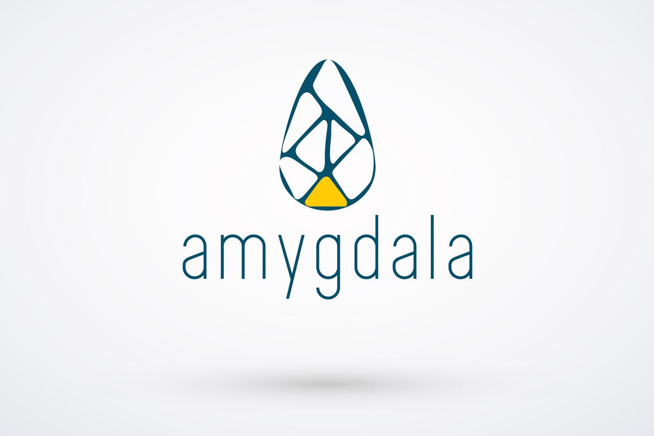 AMY_logo